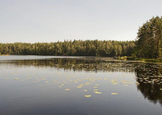 2 bonnes raisons de partir en Finlande